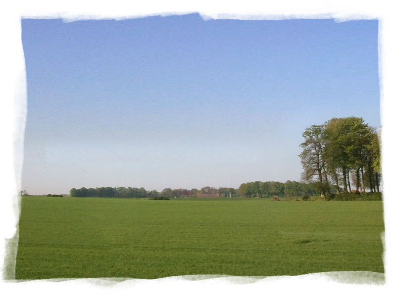 Fields and countryside near Fécamp